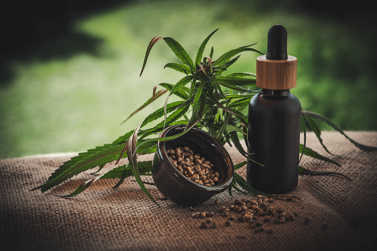 CBD - Cannabidiol and hemp seeds